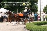 XVIII Konkurs Pojazdów Konnych w Lubostroniu
