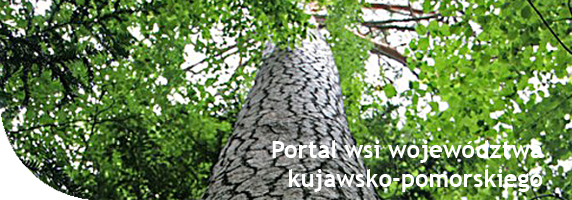 Aktywnawieś: rękodzieło,twórcy ludowi,agroturystyka,kujawsko-pomorska wieś